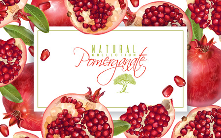 Pomegranate horizontal banner