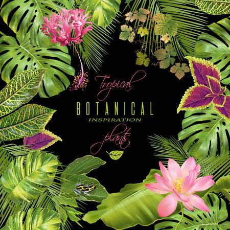 Tropical flowers frame