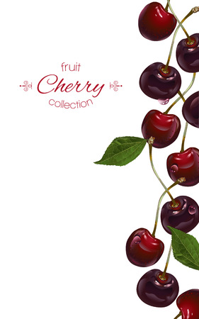 Cherry verticale banners