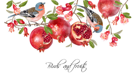 Finch pomegranate border Stock Illustratie