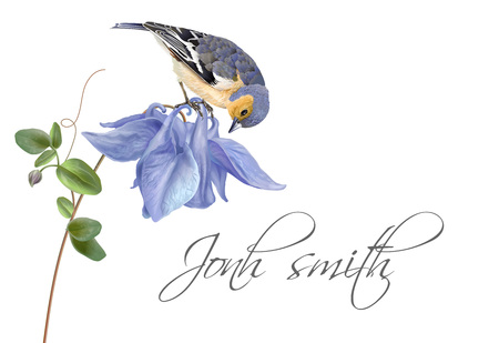 Blue flower bird name card Illustration