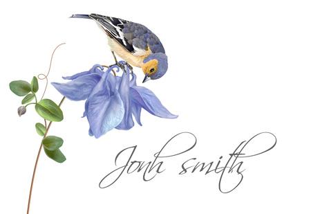 Blue flower bird name card Illusztráció