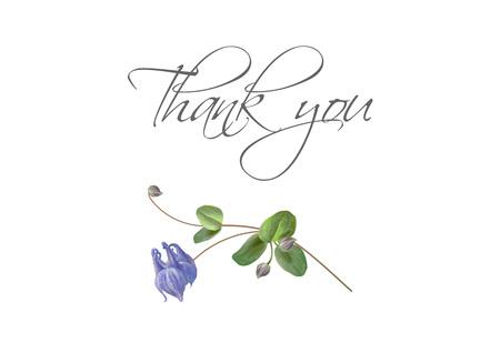Blue flower bird thank you card