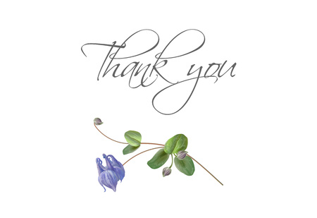 Blue flower bird thank you card