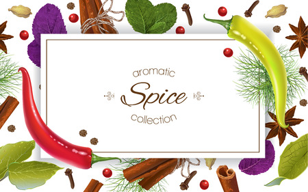 A Vector spice horizontal banner with various seasonings on white background.