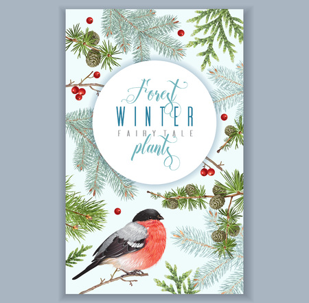 Winter bullfinch banner