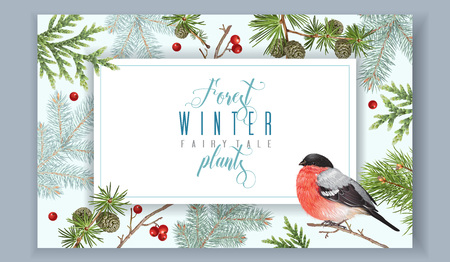 Winter horizontal bullfinch banner
