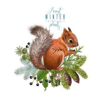Winter squirrel composition Stok Fotoğraf - 88048108
