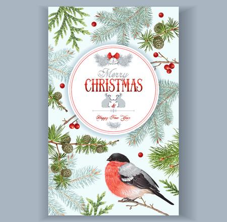 Christmas bullfinch frame