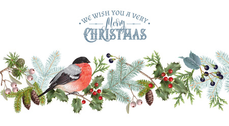 Bullfinch Christmas border