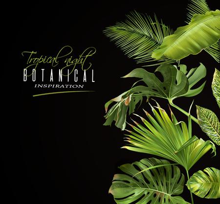 Banner notturno tropicale