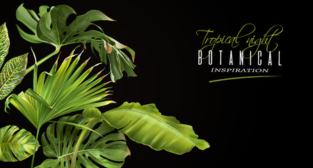 Tropical night horizontal banner Stock fotó - 89408788