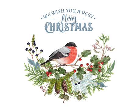 Bullfinch Christmas composition