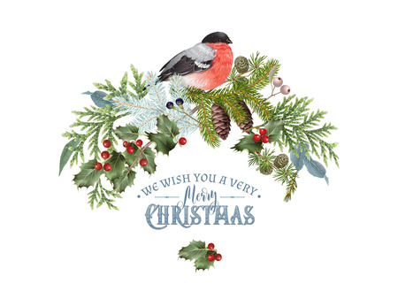 Christmas concept with bullfinch design template