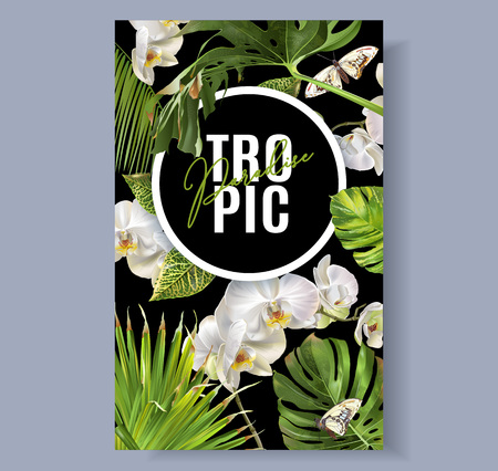 Tropic orchid banner Illustration