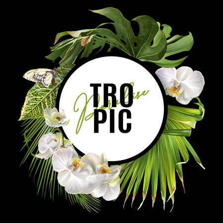 Tropic round banner Stock Illustratie