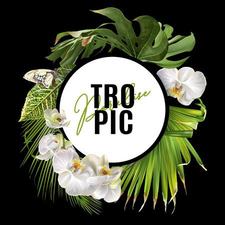Tropic round banner Ilustracja