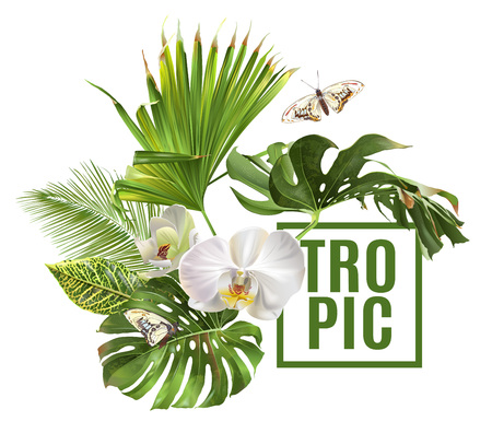 Tropic plants banner Stock Illustratie