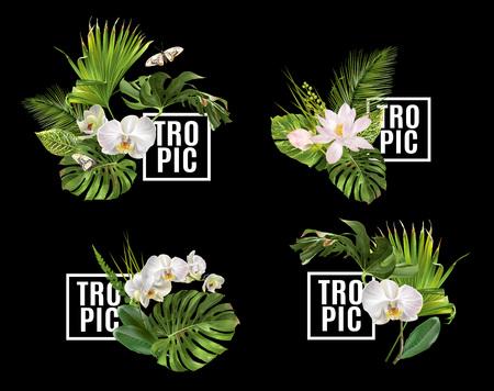 熱帯植物バナー セット  イラスト・ベクター素材