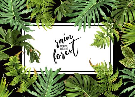 熱帯植物の設計  イラスト・ベクター素材