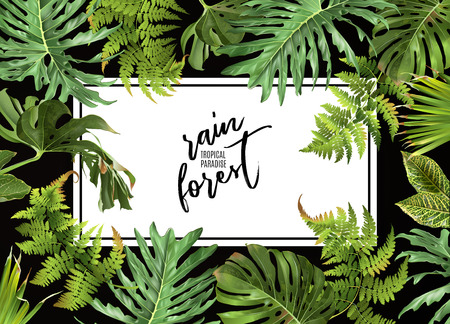 Tropical plants design Vectores