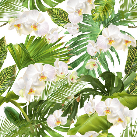 Tropical orchid leave pattern