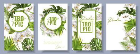 Le insegne verticali botaniche di vettore hanno messo con le foglie tropicali, i fiori dell'orchidea e le farfalle su bianco. Design per cosmetici, spa, prodotti per la cura della salute, società di viaggi. Può essere usato come sfondo estivo Archivio Fotografico - 95177420