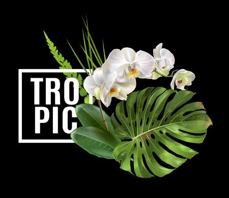 Tropic plants banner Vector illustration. Ilustração