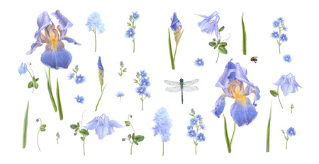 Blue flower and insects illustration  イラスト・ベクター素材