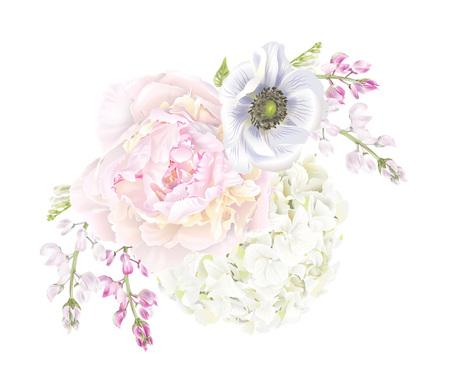 Peony anemone composition Çizim