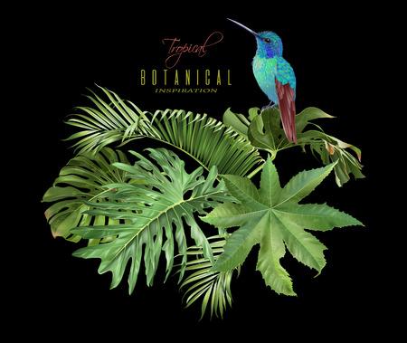 Hummingbird tropic arrangement Stock Illustratie