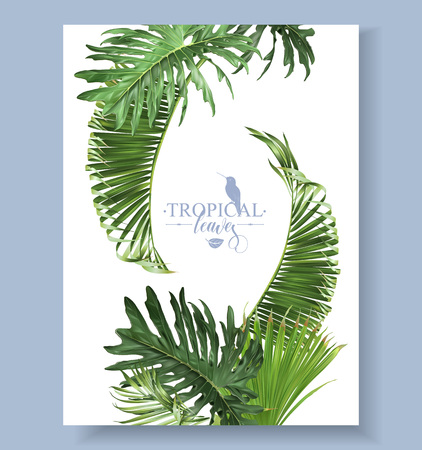 Tropical leaves banner vector illustration.  イラスト・ベクター素材