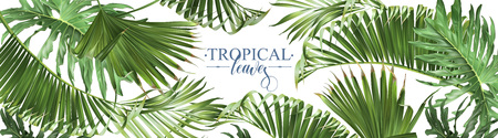Tropical leaves web banner