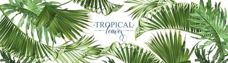 Bannière web de feuilles tropicales