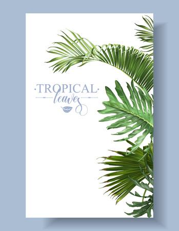 Tropical leaf border