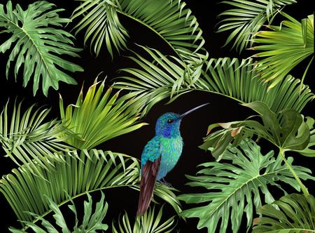 Tropical hummingbird banner
