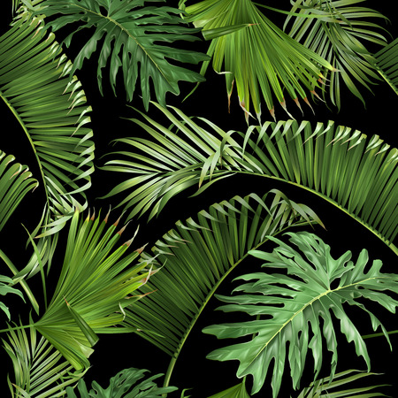 Tropical leaves black pattern 矢量图像