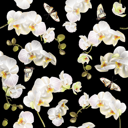 Floral orchid pattern background