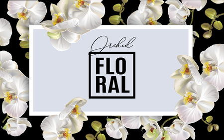 Orchid horizontal frame template