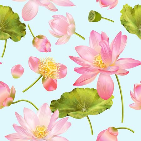 Patrón de flor de loto