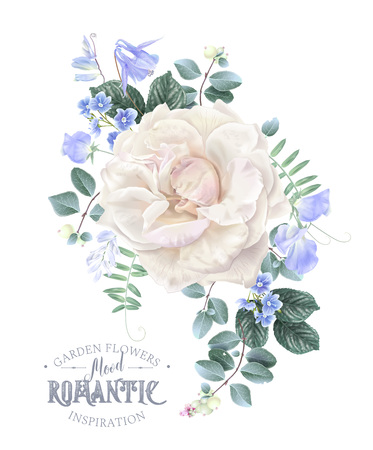 Vector vintage composition with garden rose, forget me not and sweet pea flowers on white. Floral design for natural cosmetics, perfume, women products. Best for wedding invitation, greeting card Stock Vector - 110513266