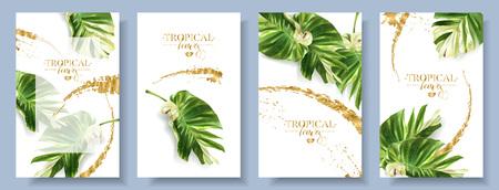 Set di banner vettoriali di foglia tropicale di alocasia
