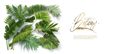 Vector horizontal banner with green tropical leaves on white background. Luxury exotic botanical design for cosmetics, spa, perfume, aroma, beauty salon. Best as wedding invitation card Çizim