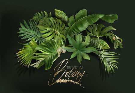 Vector banner with green tropical leaves on dark green background. Luxury exotic botanical design for cosmetics, spa, perfume, aroma, beauty salon, travel agency, florist shop 일러스트