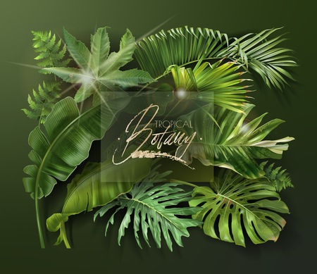 Vector banner with green tropical leaves on dark green background. Luxury exotic botanical design for cosmetics, spa, perfume, aroma, beauty salon, travel agency, florist shop Illustration