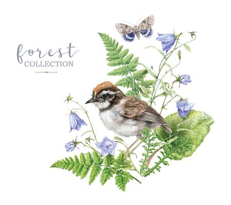 Cuadro acuarela con plantas forestales y aves. Foto de archivo