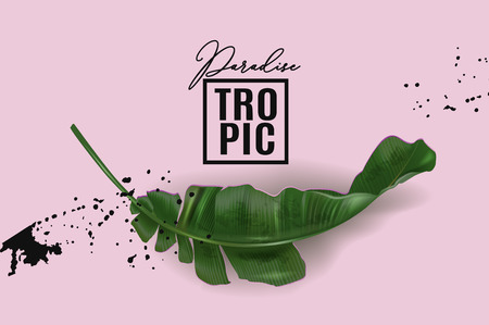 Vector advertising banner with green banana leaf with black splash on pink. Exotic botany template for cosmetics, spa, perfume, woman health care product, tourist agency. Best as pakaging design