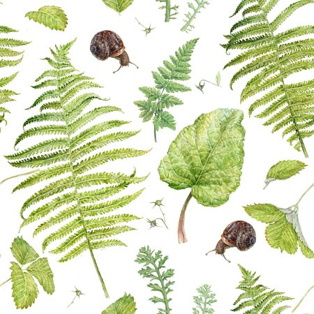 Watercolor pattern with forest plants and snails