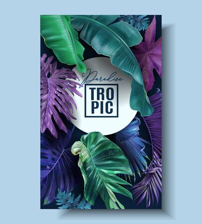 Vector frame banner with color tropical leaves Ilustrace