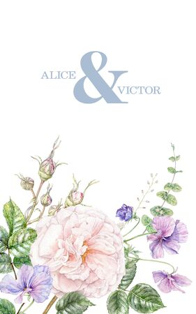 Watercolor wedding invitation with pink rose and violet flowers card isolated on white background. Botanical border for natural cosmetics, women products packaging, summer background, greeting design